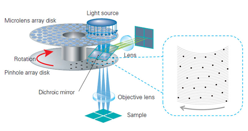 Figure 2. Schematic presentation of the optical system of a spinning disk confocal microscope. (a) Complete structure