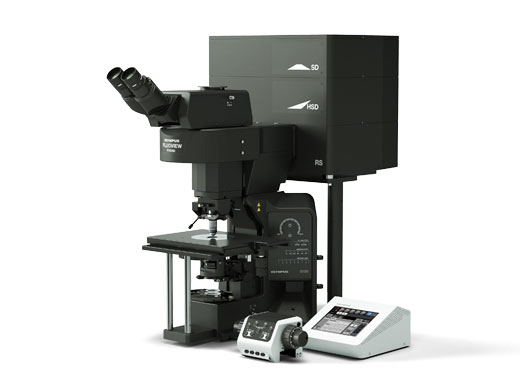 Upright microscope (configured for electrophysiology)